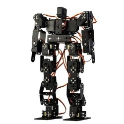 17 Eksenli İnsanımsı Robot - Humanoid Robot