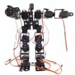 19 Eksenli İnsanımsı Robot - Humanoid Robot