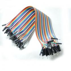 200mm Dişi-Erkek 40 Pin Jumper Kablo
